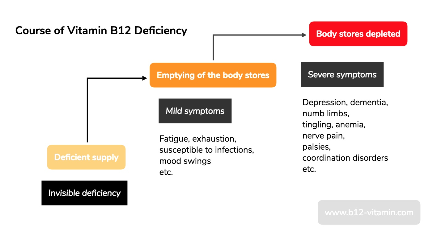 Vitamin B12 Deficiency Symptoms | Dr  Schweikart