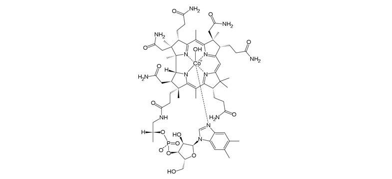 Hydroxocobalamin – Long-Lasting Vitamin B12