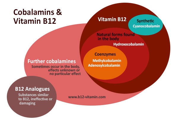 vitamin-b12-forms