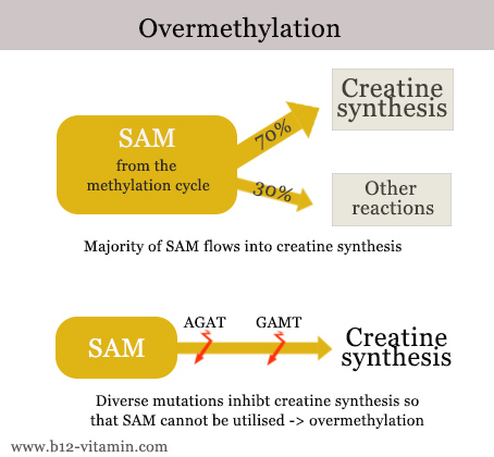 over-methylation