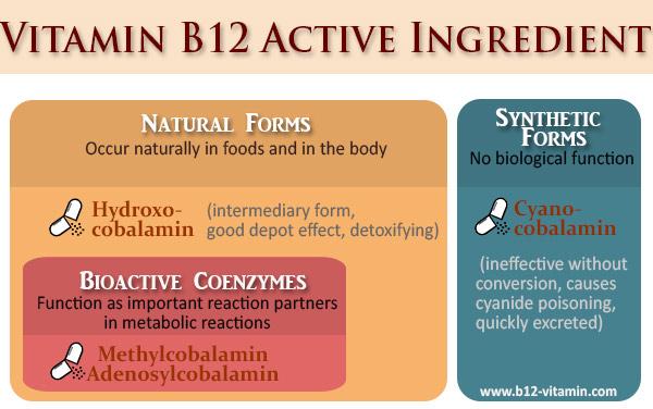 EN_b12-active-ingredients