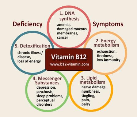 EN_b12-deficiency-symptoms