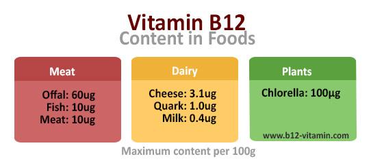 EN_b12-sources-foods